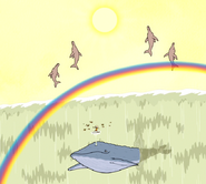 S5E29.122 Dolphins Suddenly Appears
