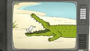 S7E20.016 Sewer Gator