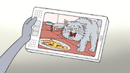 S7E07.044 Curmudgeon Cat Claiming the Pizza