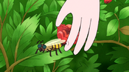 S5E29.010 Pops Stung by a Bee