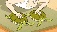 S6E15.095 The Turtles Feeling the Pressure