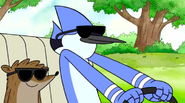 M r sunglasses