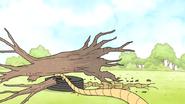 S5E11.059 The Tree Falls Over