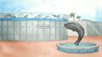 S5E17.05 Aquarium