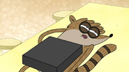 S7E20.082 Rigby Placed on the Table