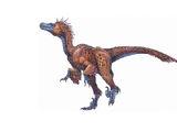 Paleotherian