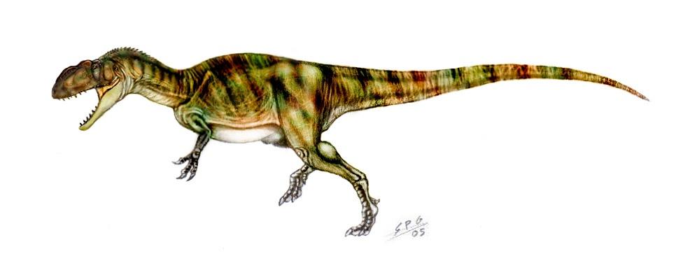 Yangchuanosaurus   Theropods Wiki   FANDOM powered by Wikia