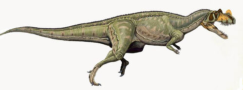 Ceratosaurus nasicornis DB