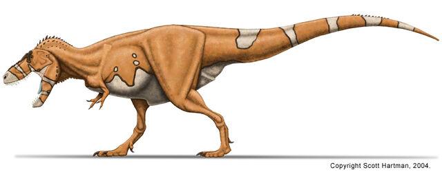 File:Tyrannosaurus stan.jpg