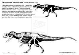 Ceratosaurus wasn t a wuss by shartman-d5wm7dn