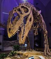 Giganothosaurus