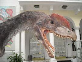 Dilophosaurus wetherilli 2