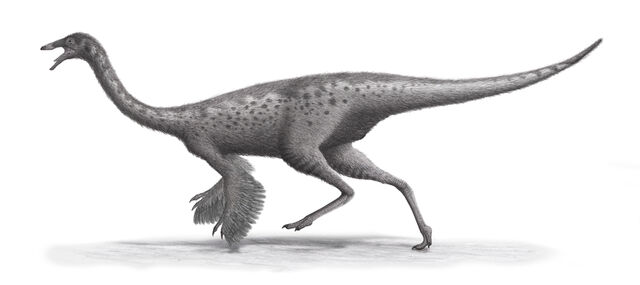 File:Feathered Gallimimus.jpg