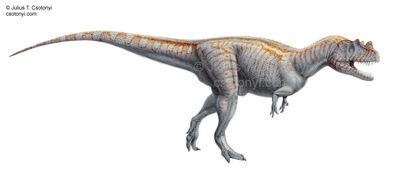 Ceratosaurus nasicornis01