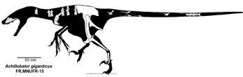 AchillobatorSkeleton