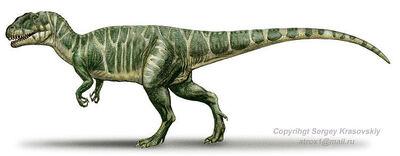 Piatnitzkisaurus (1)