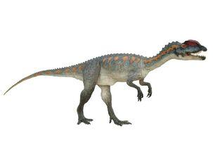 Dilophosaurus027