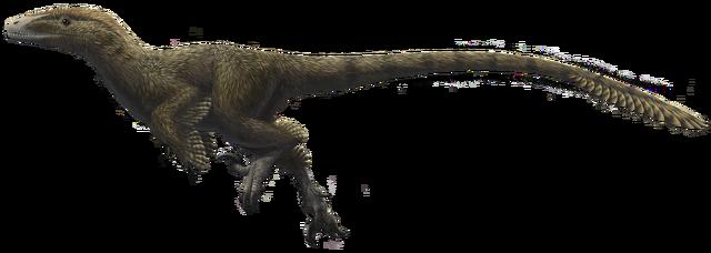 File:Utahraptor ostrommaysorum.png