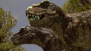 JFC Rex