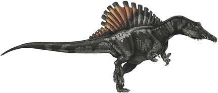Spinosaurus-dinosaurs-22233517-1488-639