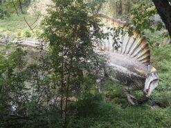 Spinosauro del Parco Natura Viva 2015 (2)