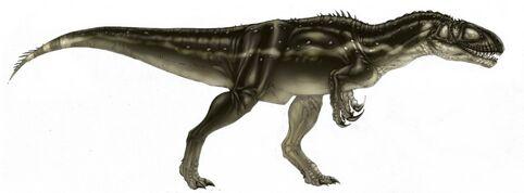 Megalosaurus-Brett-Booth-1024x379