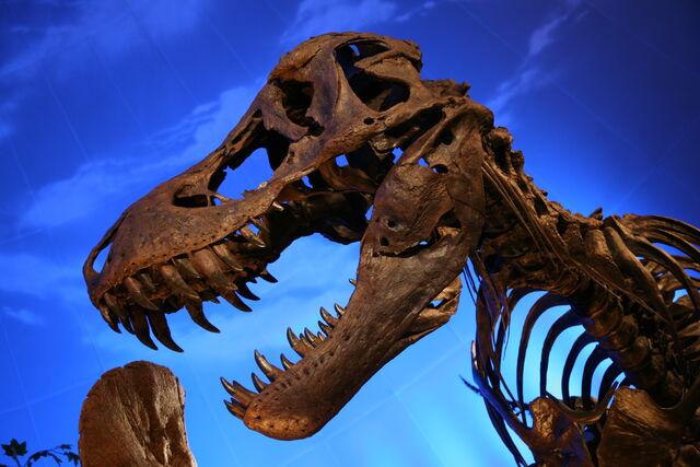 File:T Rex cast.jpg