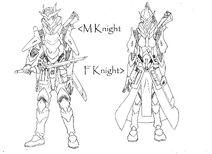 M & F Knight