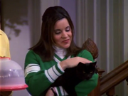Libby Stroking Salem