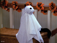 Salem as a Ghost