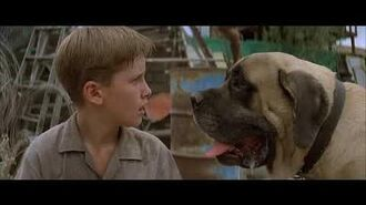 The sandlot (1993)- the beast trapped! SCENE