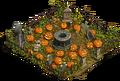 S Pumpkin Field.png