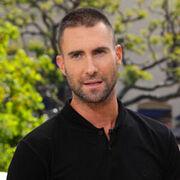 PHOTO-Adam-Levine-shaves-his-head