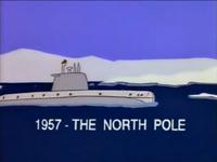 北极与波波