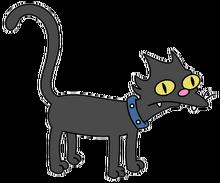 可爱的黑猫