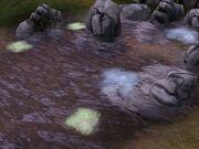 Leech Pond