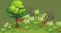 A Garden that needs Tiding