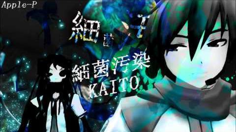 Bacterial Contamination KAITO