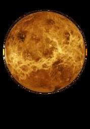 Venus Cut