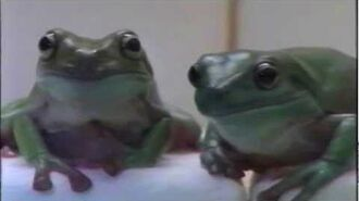 """Sony Home Entertainment TV 'Swan Princess 2' - """"Frogs"""""""