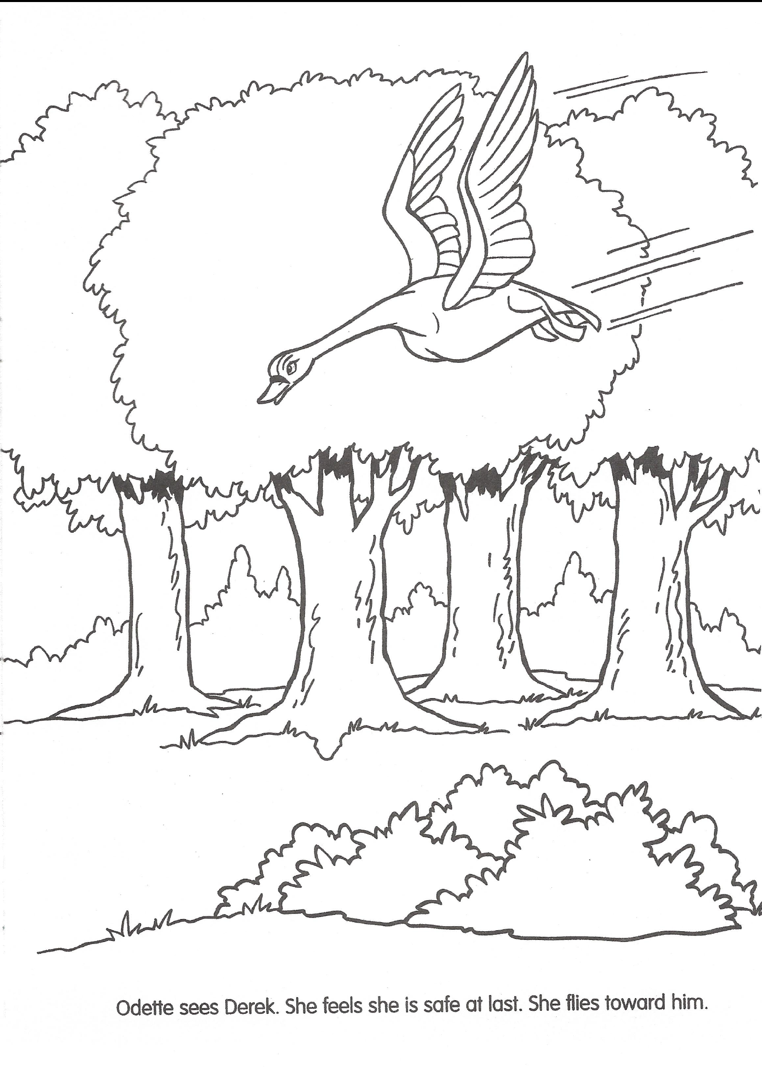 Swan Princess Official Coloring Page 28