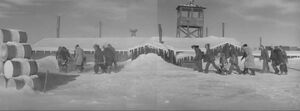Polar Expedition Six - Profile