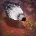 Feather Fan - RTKXIII