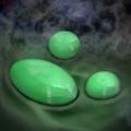 Jade - RTKXIII
