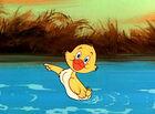 Quacker The Duck