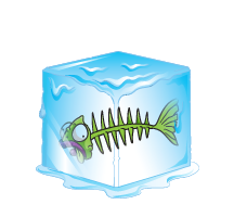 Frost-Fish
