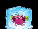 Frozen Fly