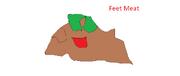 Feet Meat