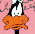 Daffy portrait
