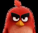 Red the Bird